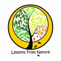 Lessons from nature modules trialled across the EU